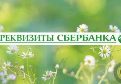 Реквизиты Сбербанка: ИНН, БИК, КПП, телефон, счет в Москве и СПБ.