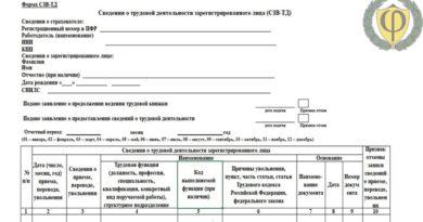 Форма СЗВ-ТД 2020: образец заполнения, скачать бланк бесплатно