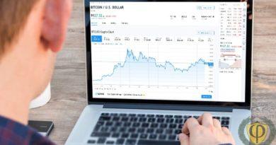 Торговля криптовалютой на бирже: бот, площадки, стратегия, и основы