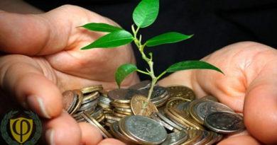 Как правильно инвестировать деньги и куда их лучше всего вложить?