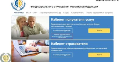 Личный кабинет ФСС через Госуслуги для юридических лиц: регистрация и вход в систему